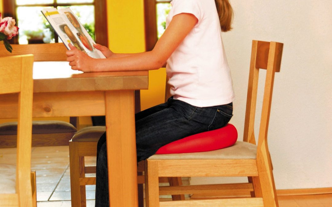 Wobble Cushion Benefits –  Can They Make You More Intelligent?