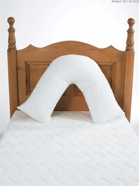 Pillowcase for Harley V Pillow