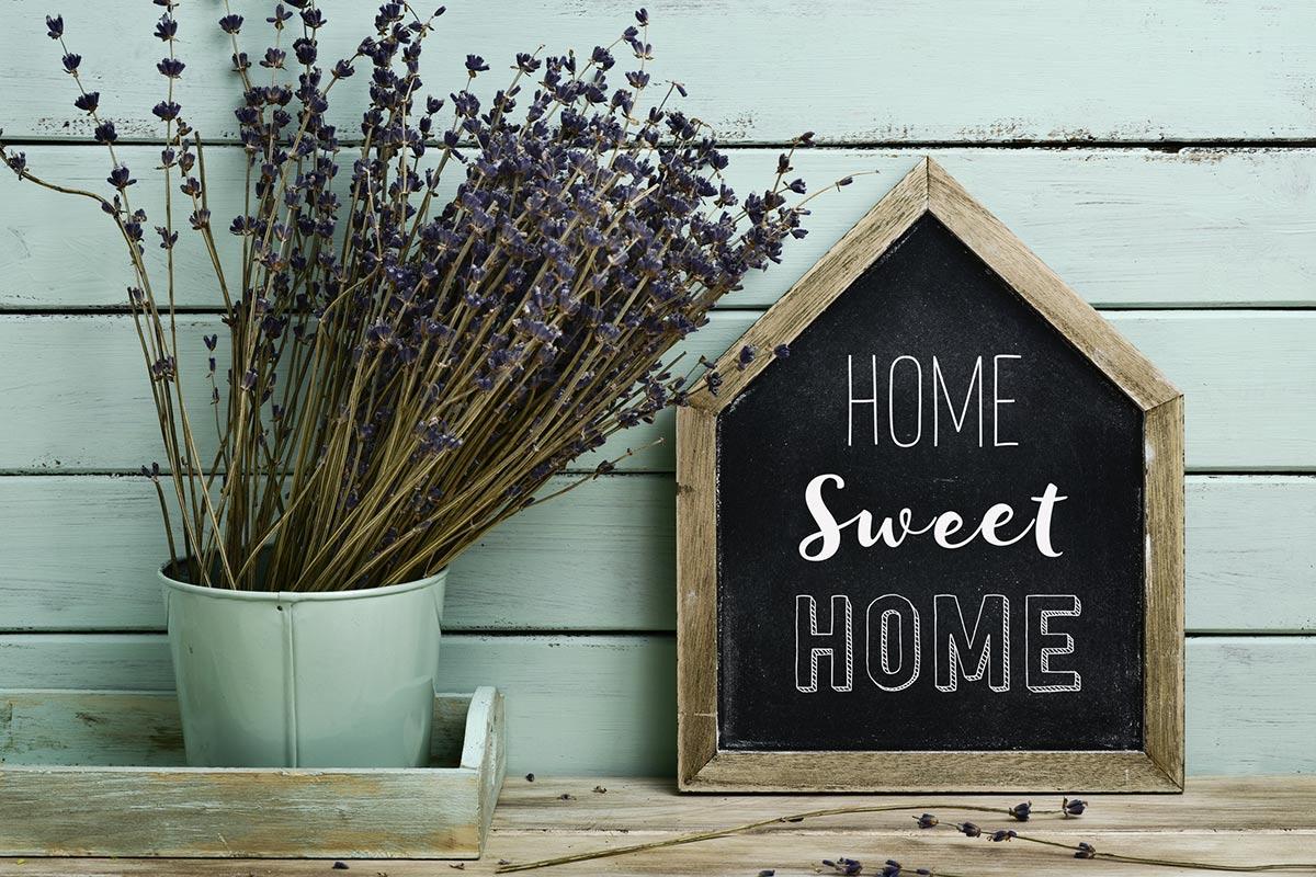 At-Home-Advice-Hub-image