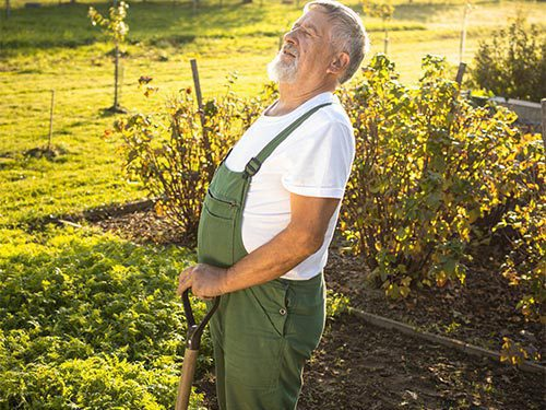 Garden-Tools-Can-Help-Prevent-Back-Pain