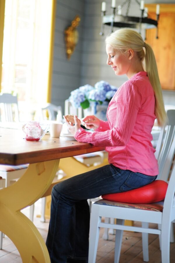 Sissel Sit Fit Plus Relief For Back Pain scaled 1